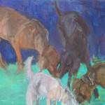 Hundewiese I, 70 x 90 cm, 2011